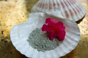 Clay with Flower